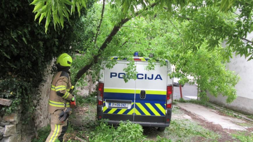 Drevo padlo na policijsko vozilo!