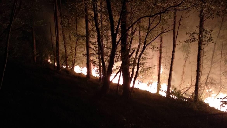 Požar med Ajdovščino in Colom zopet vzplamtel!